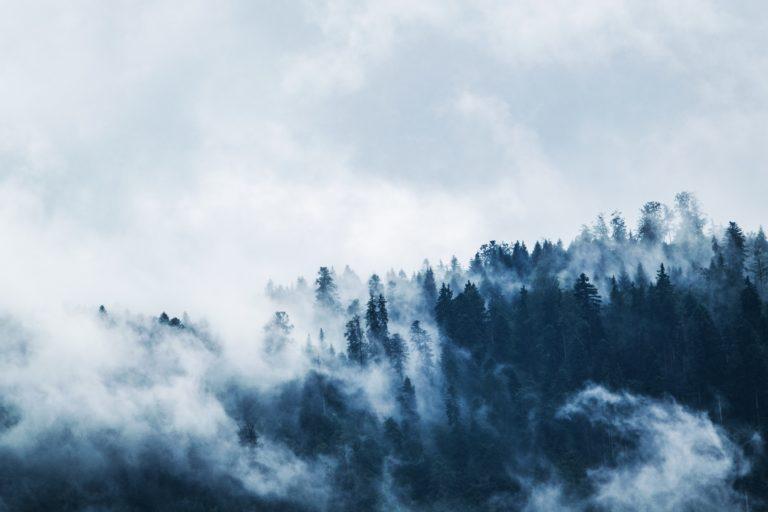 Zima, chandra, depresja – i co dalej?