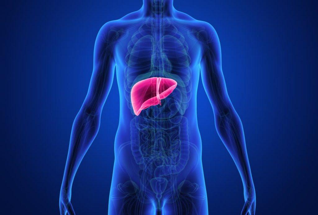 wątroba a insulinooporność