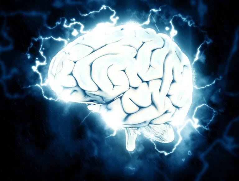 Dieta dla prawidłowej pracy mózgu